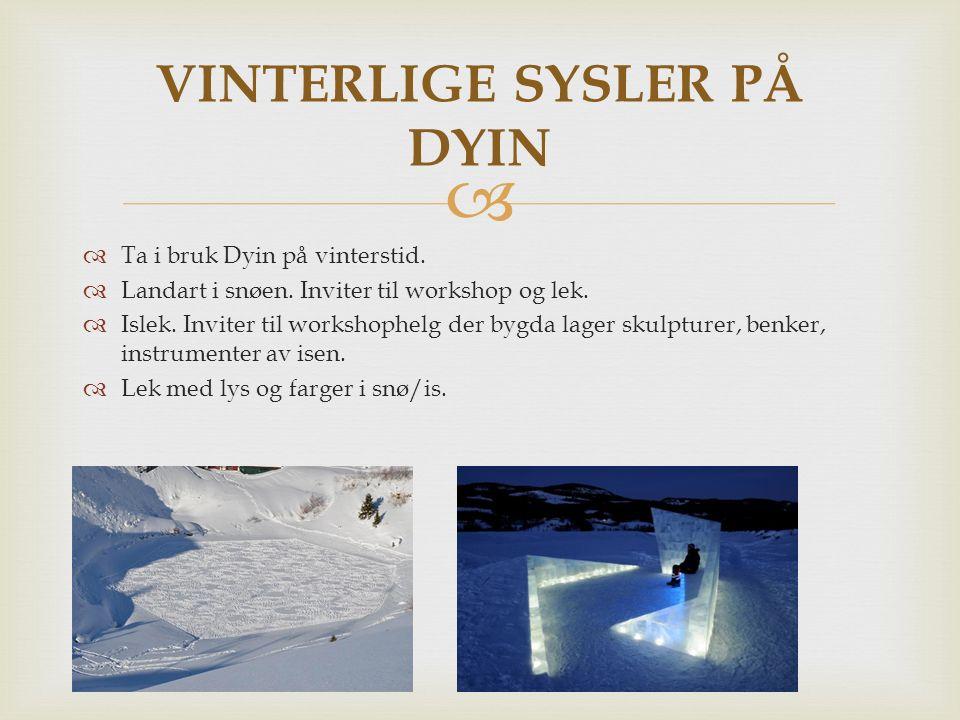  Ta i bruk Dyin på vinterstid.  Landart i snøen. Inviter til workshop og lek.  Islek. Inviter til workshophelg der bygda lager skulpturer, benker