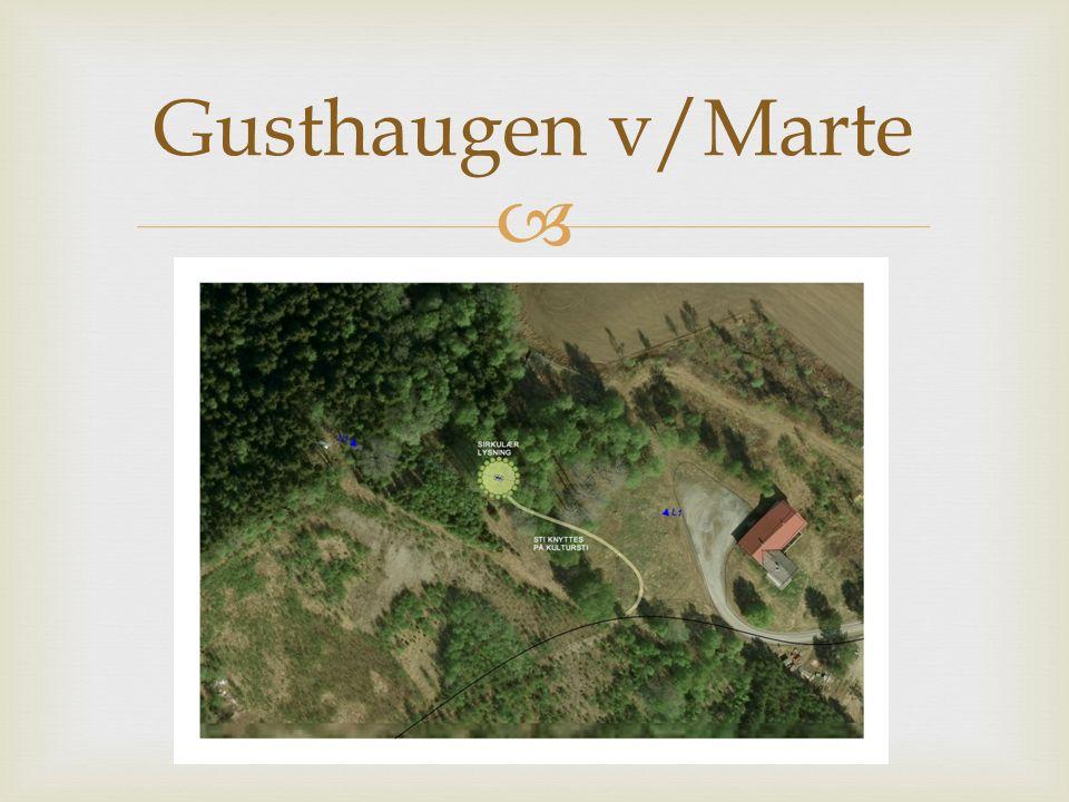   Vi ønsker gripe fatt i Gusthaugens historie som gravplass/offerplass  En sirkel ryddes, planeres og såes til med blomster  I midten graves en «vikinggrav» som steinsettes  I bunnen legges et materiale som kan speile himmelen.