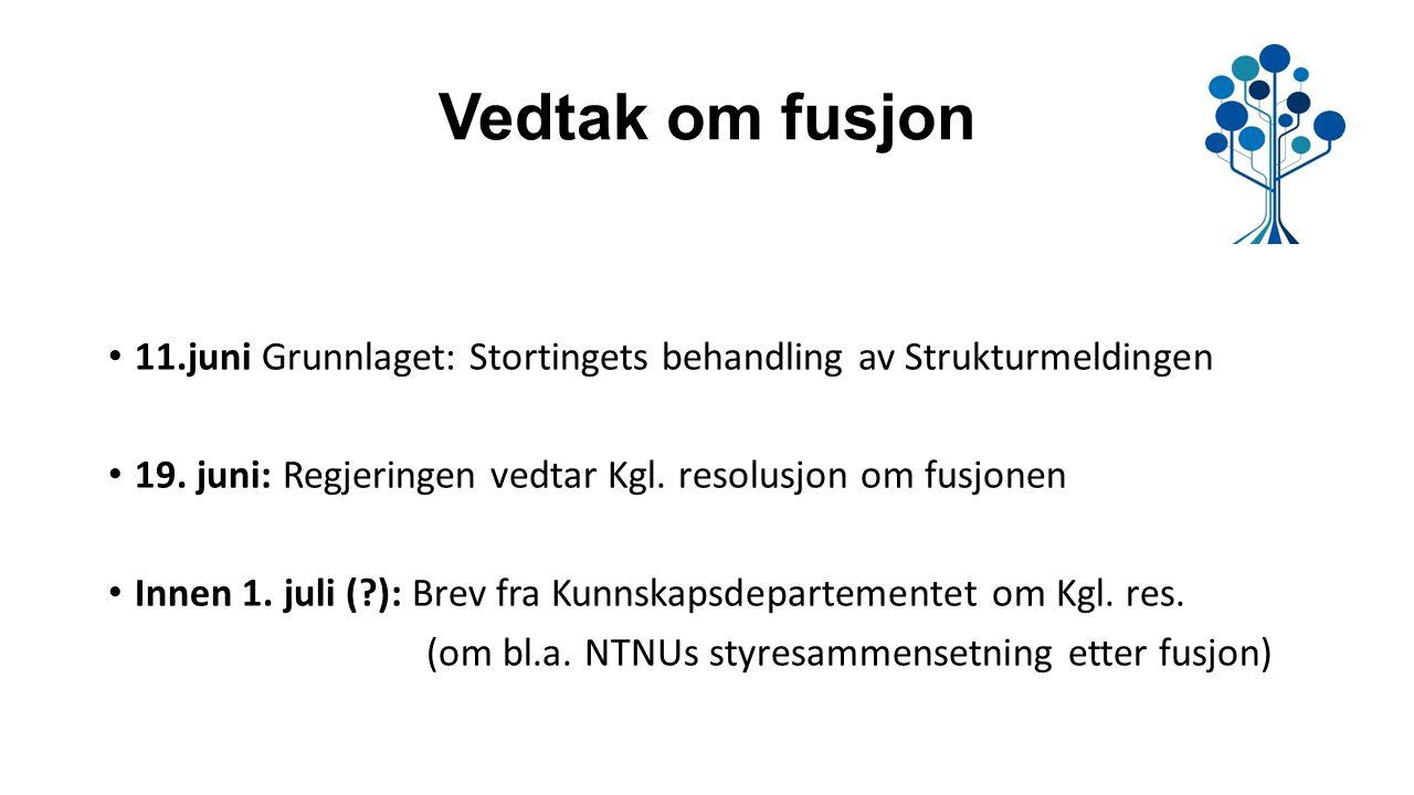 Vedtak om fusjon 11.juni Grunnlaget: Stortingets behandling av Strukturmeldingen 19.