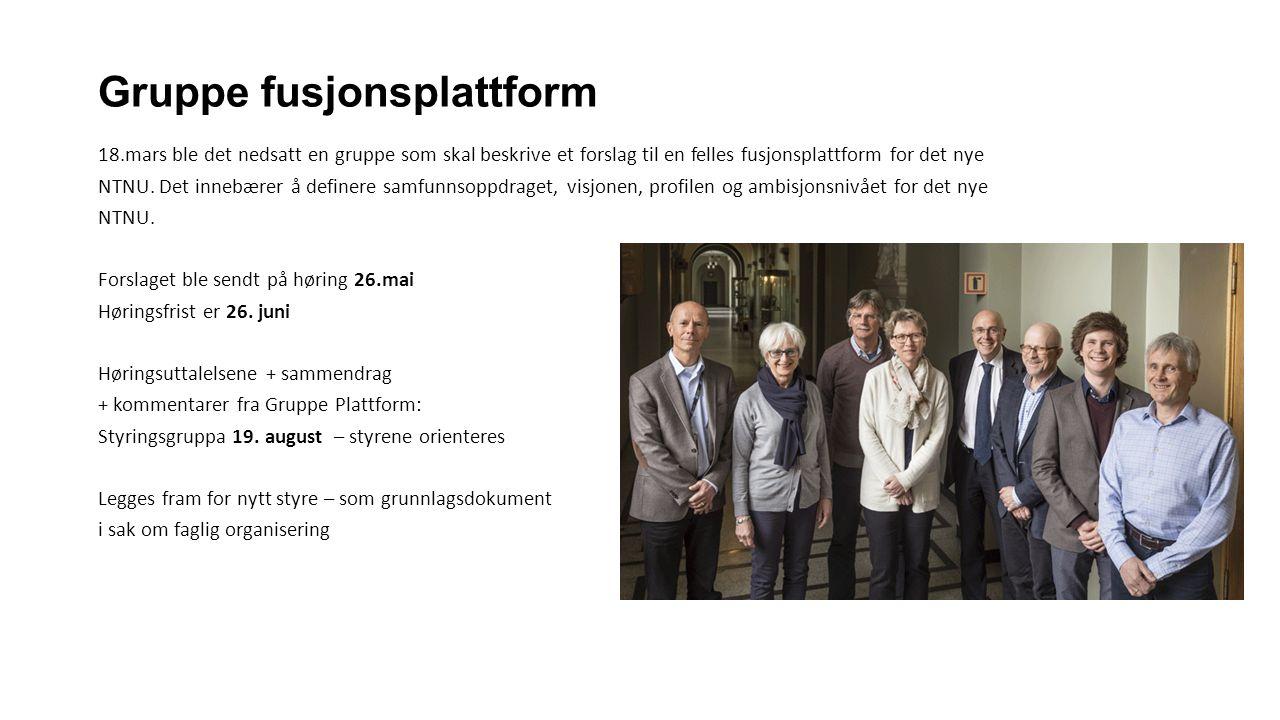 Gruppe fusjonsplattform 18.mars ble det nedsatt en gruppe som skal beskrive et forslag til en felles fusjonsplattform for det nye NTNU.