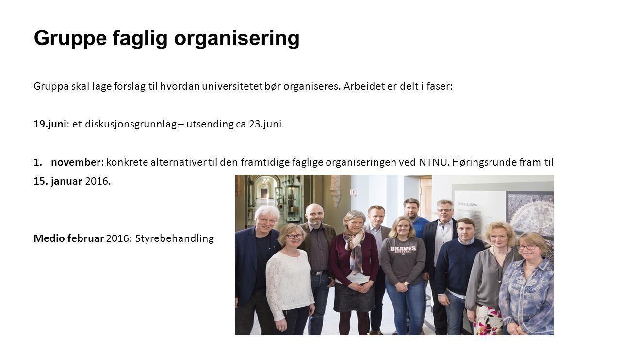Gruppe faglig organisering Gruppa skal lage forslag til hvordan universitetet bør organiseres.