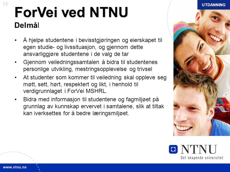13 NTNU mars 2010 ForVei ved NTNU ForVei ved NTNU Delmål Å hjelpe studentene i bevisstgjøringen og eierskapet til egen studie- og livssituasjon, og gj