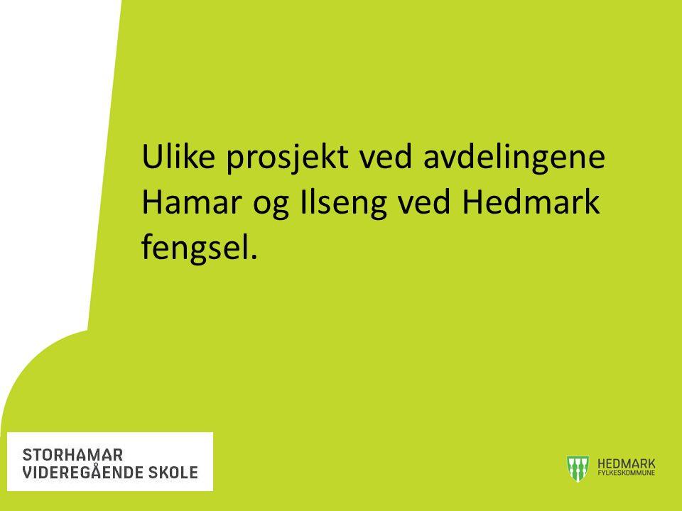 Ulike prosjekt ved avdelingene Hamar og Ilseng ved Hedmark fengsel.