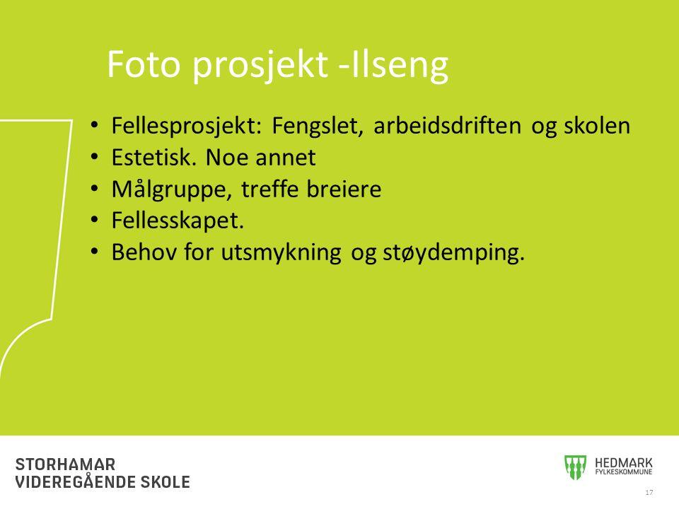 17 Foto prosjekt -Ilseng Fellesprosjekt: Fengslet, arbeidsdriften og skolen Estetisk. Noe annet Målgruppe, treffe breiere Fellesskapet. Behov for utsm