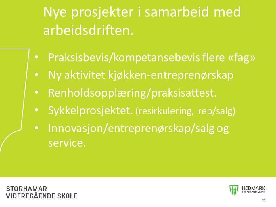 Praksisbevis/kompetansebevis flere «fag» Ny aktivitet kjøkken-entreprenørskap Renholdsopplæring/praksisattest. Sykkelprosjektet. (resirkulering, rep/s