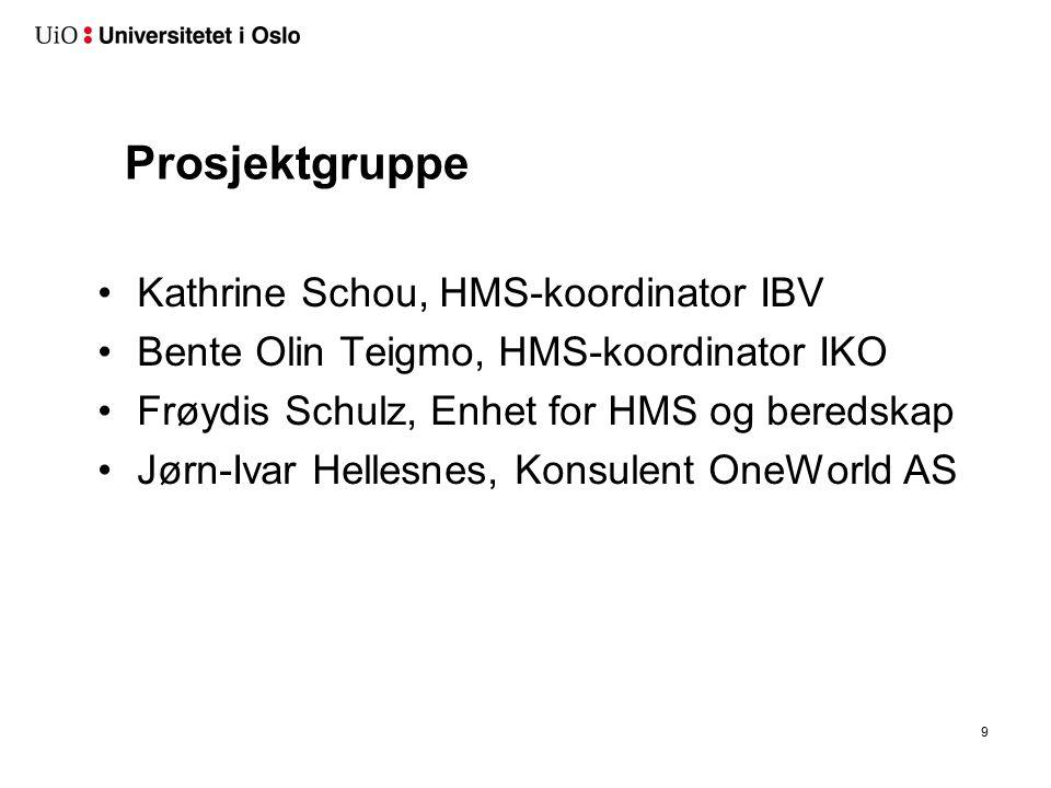 Prosjektgruppe Kathrine Schou, HMS-koordinator IBV Bente Olin Teigmo, HMS-koordinator IKO Frøydis Schulz, Enhet for HMS og beredskap Jørn-Ivar Hellesnes, Konsulent OneWorld AS 9