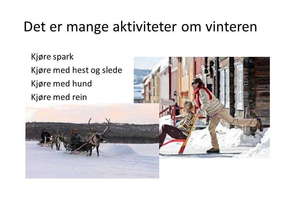 Det er mange aktiviteter om vinteren Kjøre spark Kjøre med hest og slede Kjøre med hund Kjøre med rein