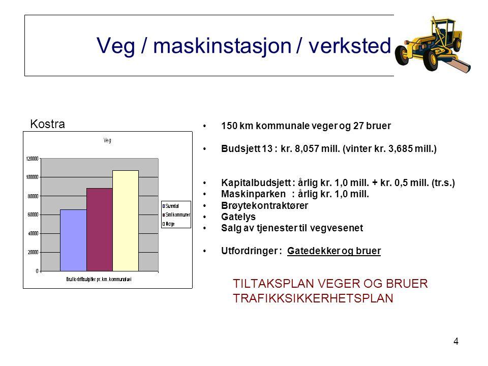 4 Veg / maskinstasjon / verksted 150 km kommunale veger og 27 bruer Budsjett 13 : kr.