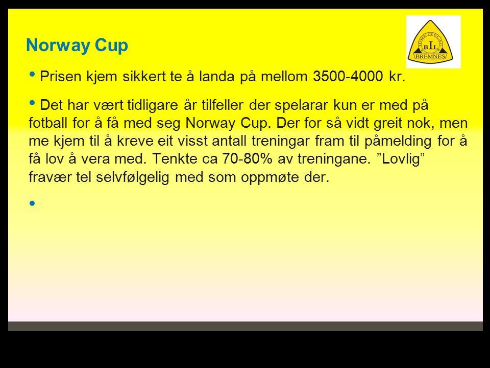 Norway Cup Prisen kjem sikkert te å landa på mellom 3500-4000 kr.