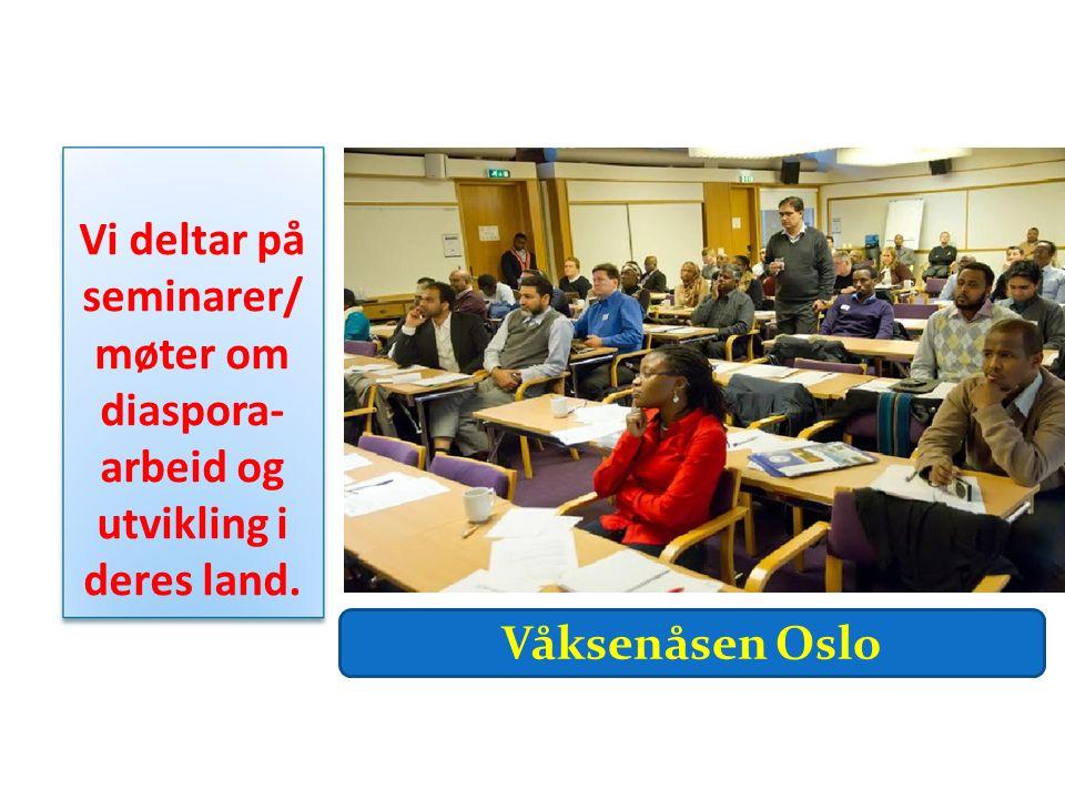 Vi deltar på seminarer/ møter om diaspora- arbeid og utvikling i deres land. Våksenåsen Oslo