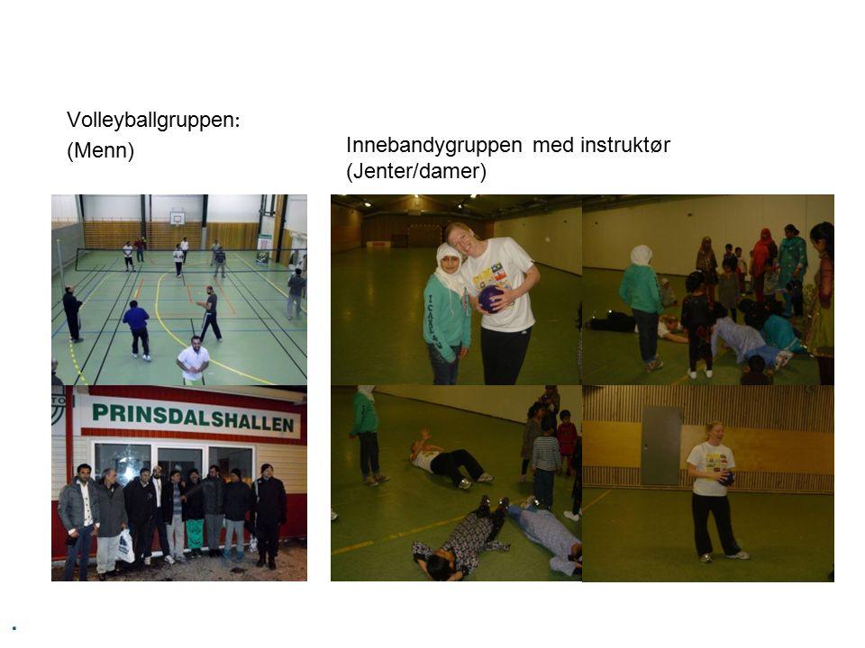 . Volleyballgruppen : (Menn) Innebandygruppen med instruktør (Jenter/damer)