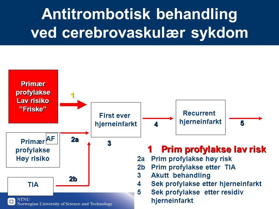 """13 Antitrombotisk behandling ved cerebrovaskulær sykdomPrimærprofylakse Lav risiko """"Friske"""" First ever hjerneinfarkt Recurrent hjerneinfarkt Primær pr"""