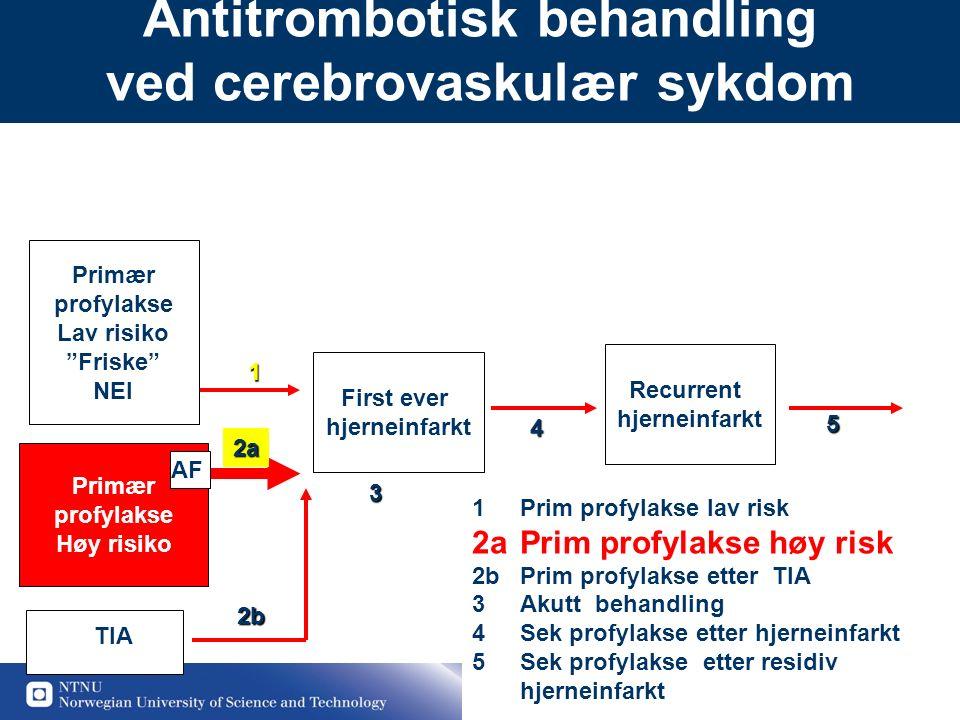 """16 Antitrombotisk behandling ved cerebrovaskulær sykdom Primær profylakse Lav risiko """"Friske"""" NEI First ever hjerneinfarkt Recurrent hjerneinfarkt Pri"""