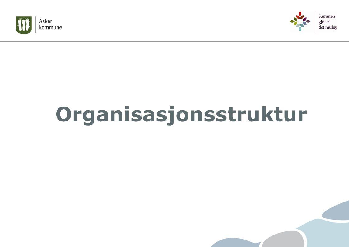 virksomhetens størrelse helhetlig tjenester økonomisk ramme kompetanse kontrollspenn ledere med fag, økonomi og personalansvar fleksibilitet effektivitet Robust organisasjon – nødvendig for å sikre strategisk ledelse - styrke, videreutvikle og samle tjenestene