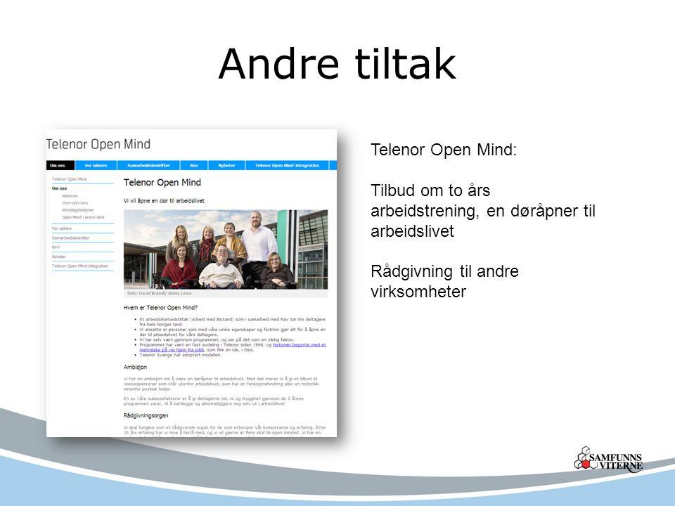 Andre tiltak Telenor Open Mind: Tilbud om to års arbeidstrening, en døråpner til arbeidslivet Rådgivning til andre virksomheter