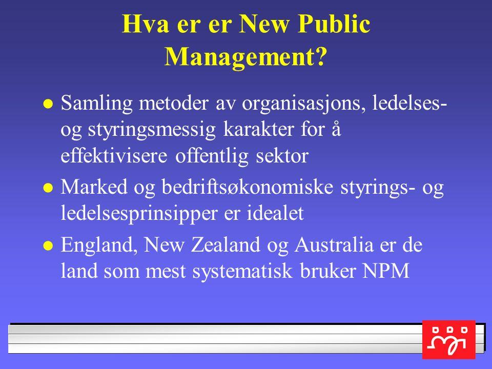 Hva er er New Public Management.