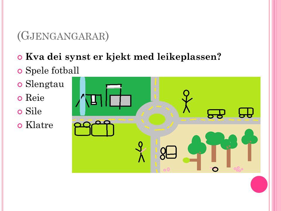 (G JENGANGARAR ) Kva dei synst er kjekt med leikeplassen Spele fotball Slengtau Reie Sile Klatre