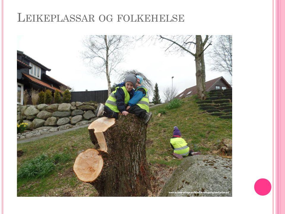 L EIKEPLASSAR OG FOLKEHELSE www.minbarnehage.no/MinBarnehage/nyland/pilot.nsf
