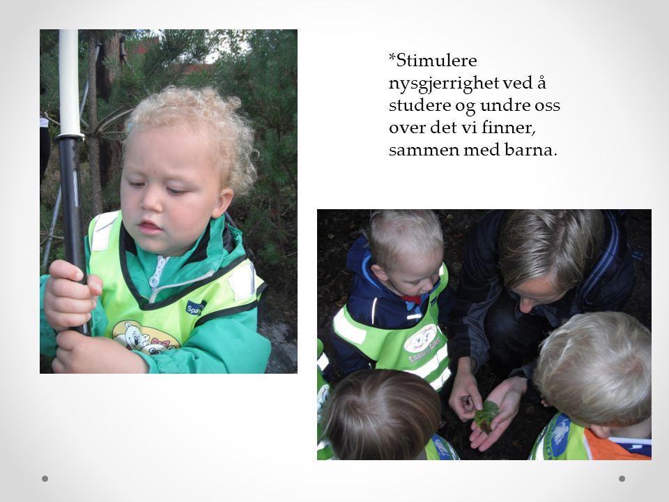 i *Stimulere nysgjerrighet ved å studere og undre oss over det vi finner, sammen med barna.
