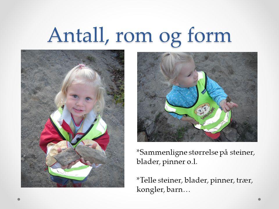 Antall, rom og form *Sammenligne størrelse på steiner, blader, pinner o.l.