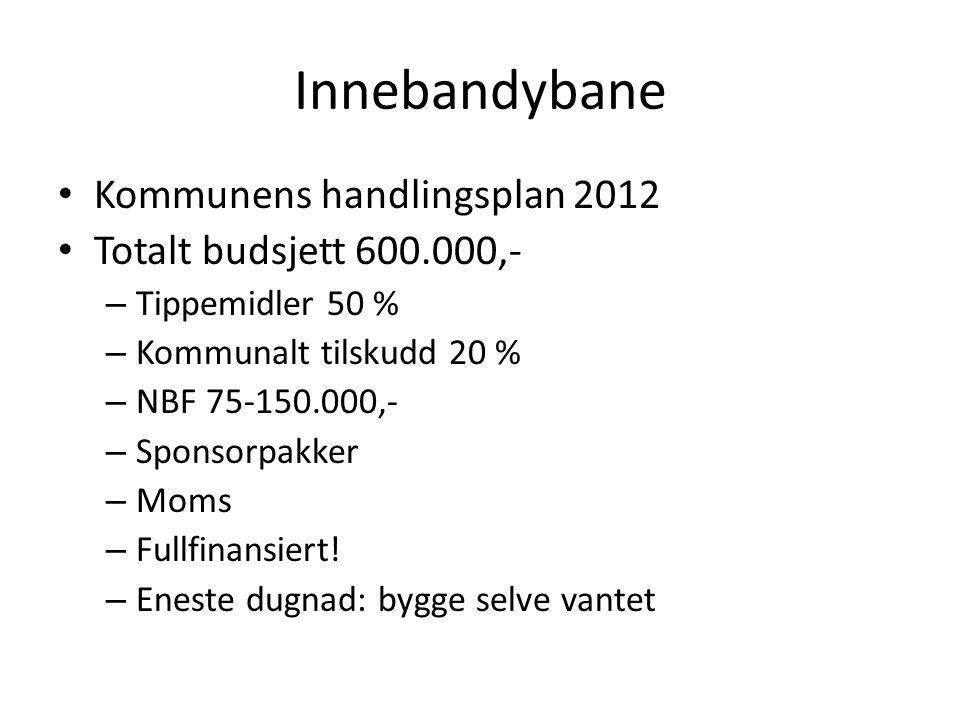 Innebandybane Kommunens handlingsplan 2012 Totalt budsjett 600.000,- – Tippemidler 50 % – Kommunalt tilskudd 20 % – NBF 75-150.000,- – Sponsorpakker – Moms – Fullfinansiert.