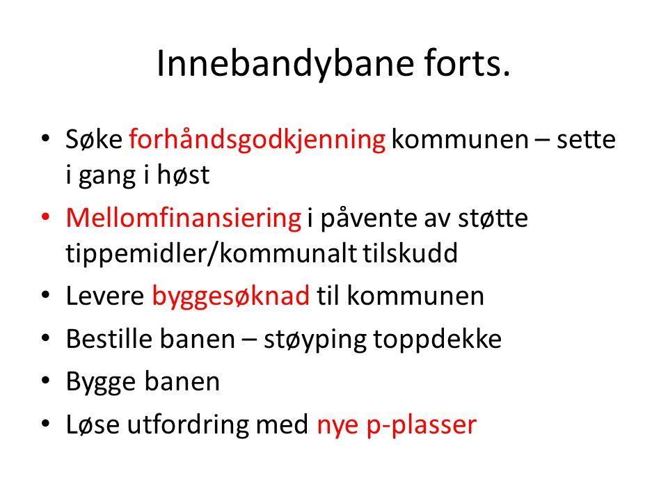Helhetlig plan Kolnes Idrettspark Utkast foreligger – godkjennes på årsmøte 2014.