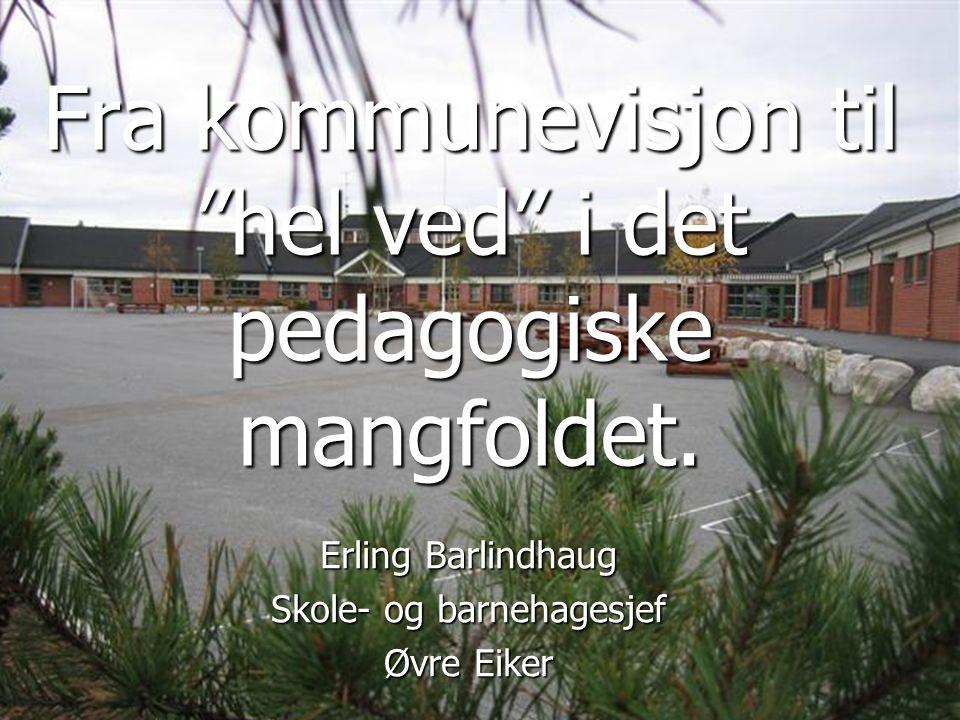 Fra kommunevisjon til hel ved i det pedagogiske mangfoldet.
