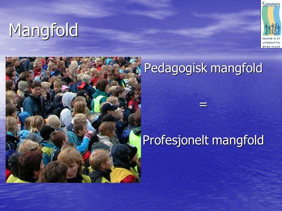 Mangfold Pedagogisk mangfold = Profesjonelt mangfold