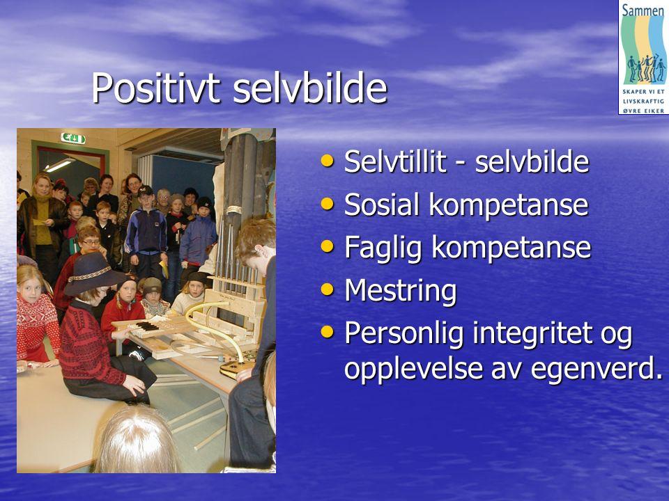 Positivt selvbilde Selvtillit - selvbilde Selvtillit - selvbilde Sosial kompetanse Sosial kompetanse Faglig kompetanse Faglig kompetanse Mestring Mestring Personlig integritet og opplevelse av egenverd.