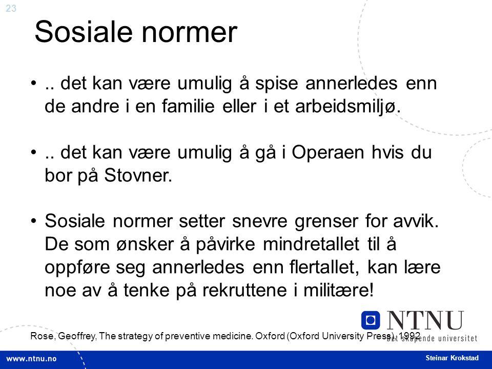 23 Steinar Krokstad..