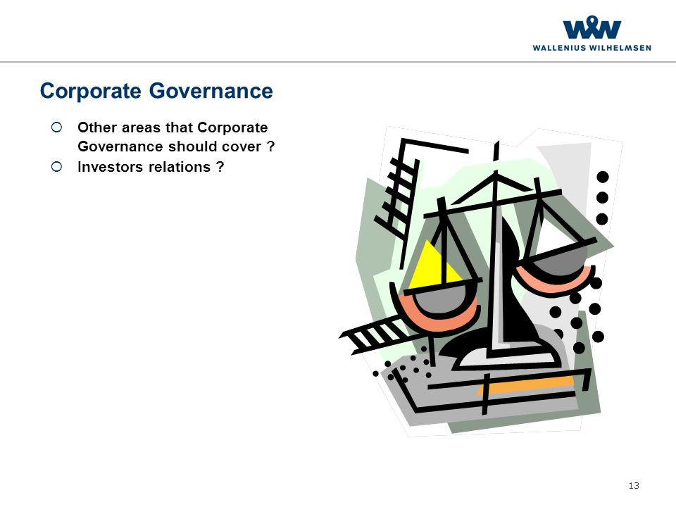13 Corporate Governance  Other areas that Corporate Governance should cover .