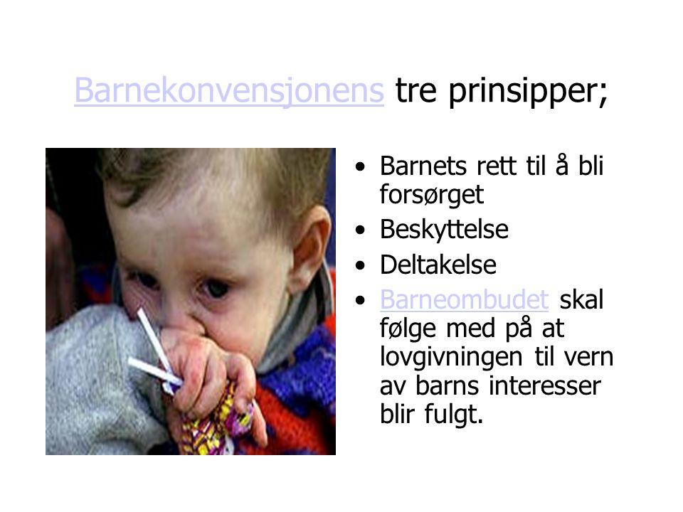 BarnekonvensjonensBarnekonvensjonens tre prinsipper; Barnets rett til å bli forsørget Beskyttelse Deltakelse Barneombudet skal følge med på at lovgivningen til vern av barns interesser blir fulgt.Barneombudet