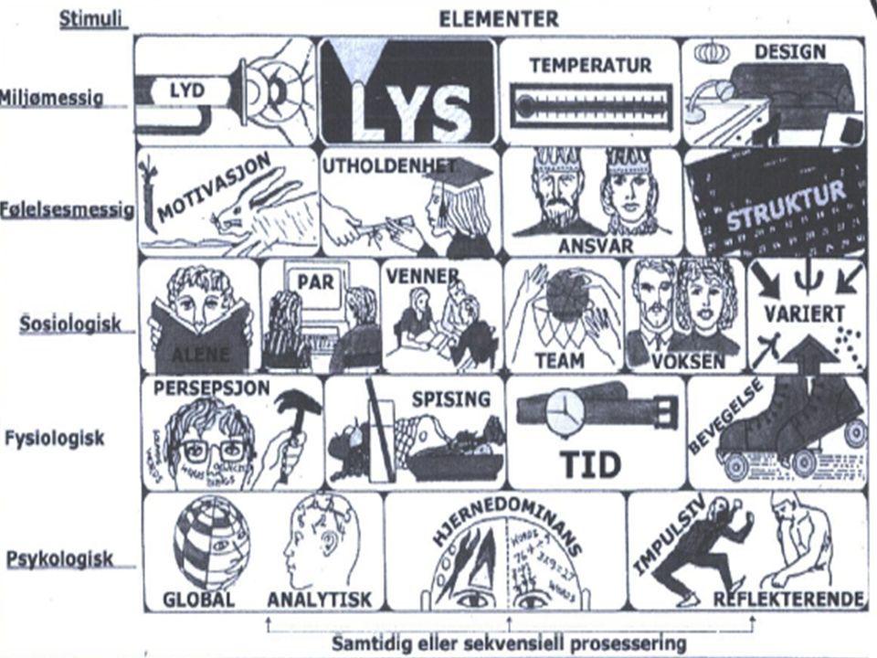 Læringsstiler og læringsstrategier De mange intelligenser - Gardners MI-teori – Språklig intelligens – Logisk-matematisk intelligens – Visuell-spatial intelligens – Kroppslig-kinestetisk intelligens – Musikalsk intelligens – Interpersonell intellligens – Intrapersonell intelligens – Naturalistisk intelligens – Åndelig intelligens
