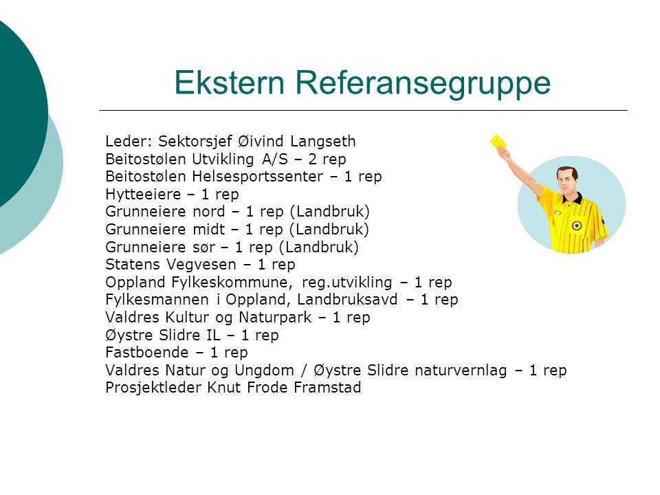 Ekstern Referansegruppe Leder: Sektorsjef Øivind Langseth Beitostølen Utvikling A/S – 2 rep Beitostølen Helsesportssenter – 1 rep Hytteeiere – 1 rep Grunneiere nord – 1 rep (Landbruk) Grunneiere midt – 1 rep (Landbruk) Grunneiere sør – 1 rep (Landbruk) Statens Vegvesen – 1 rep Oppland Fylkeskommune, reg.utvikling – 1 rep Fylkesmannen i Oppland, Landbruksavd – 1 rep Valdres Kultur og Naturpark – 1 rep Øystre Slidre IL – 1 rep Fastboende – 1 rep Valdres Natur og Ungdom / Øystre Slidre naturvernlag – 1 rep Prosjektleder Knut Frode Framstad