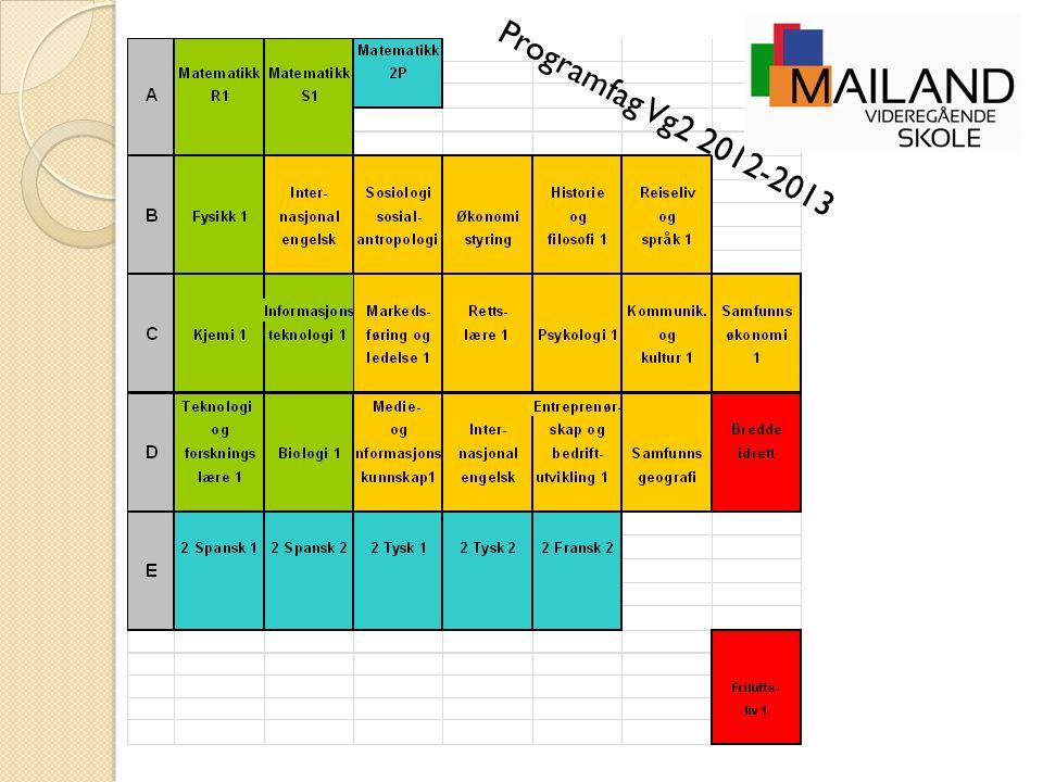 Programfag Vg2 2012-2013