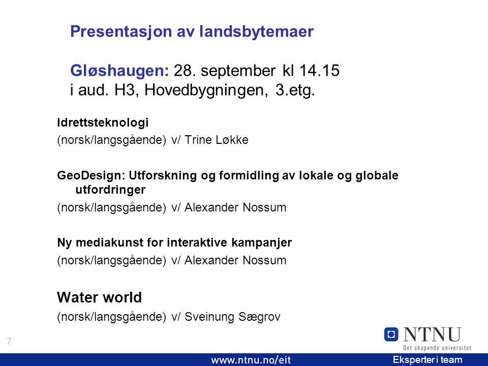 7 EiT 2006/2007 Eksperter i team Presentasjon av landsbytemaer Gløshaugen: 28.