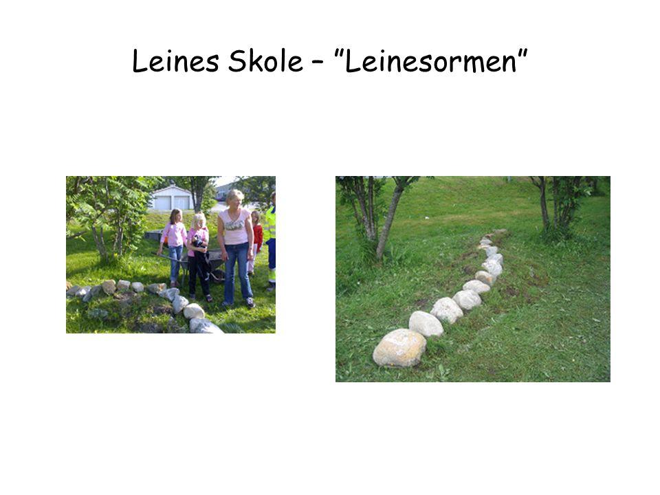 Leines Skole – Leinesormen