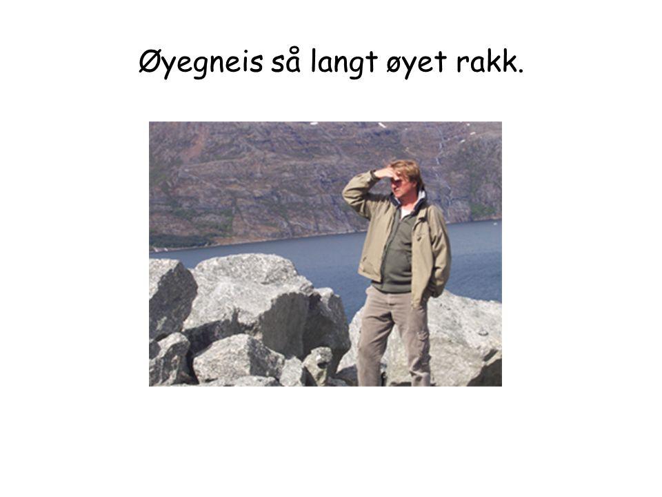 Øyegneis så langt øyet rakk.