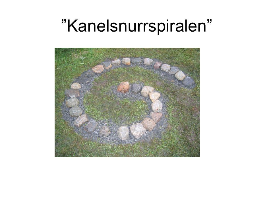 Kanelsnurrspiralen