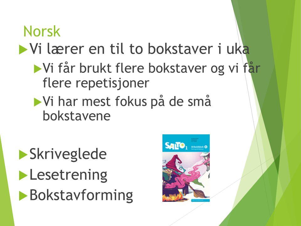 Norsk  Vi lærer en til to bokstaver i uka  Vi får brukt flere bokstaver og vi får flere repetisjoner  Vi har mest fokus på de små bokstavene  Skriveglede  Lesetrening  Bokstavforming
