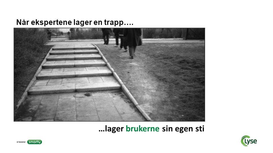 Når ekspertene lager en trapp…. …lager brukerne sin egen sti