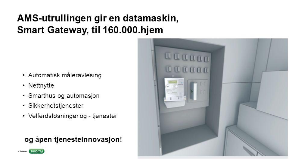 AMS-utrullingen gir en datamaskin, Smart Gateway, til 160.000.hjem Automatisk måleravlesing Nettnytte Smarthus og automasjon Sikkerhetstjenester Velfe