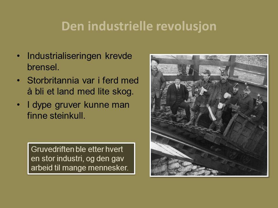 Den industrielle revolusjon Industrialiseringen krevde brensel. Storbritannia var i ferd med å bli et land med lite skog. I dype gruver kunne man finn