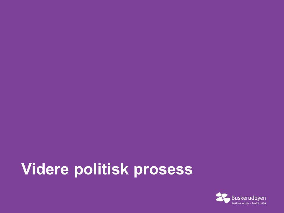 Videre politisk prosess