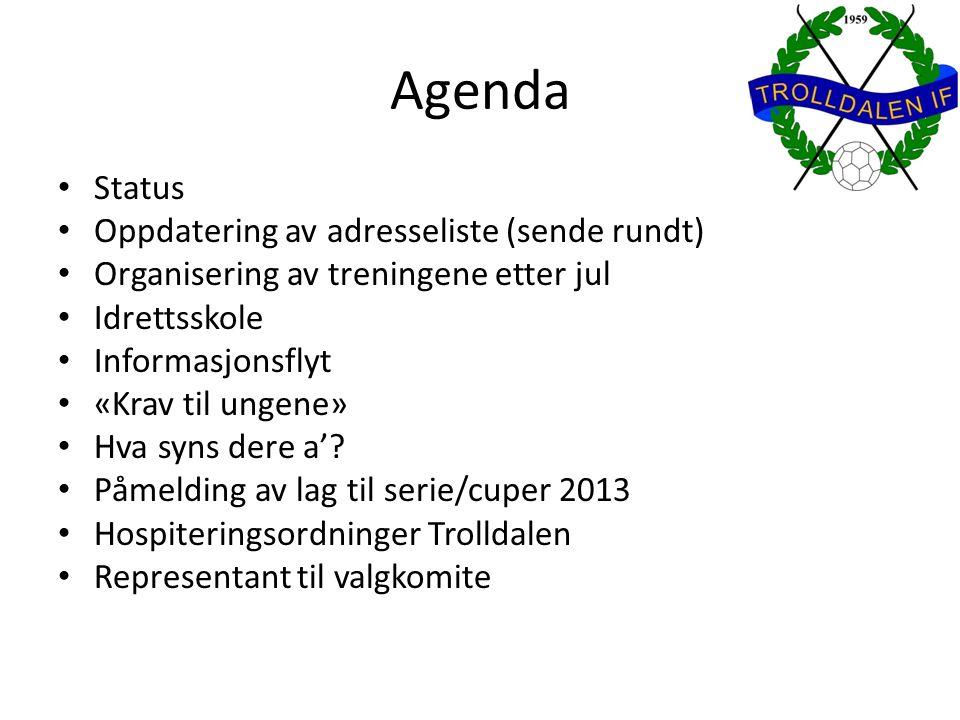 Agenda Status Oppdatering av adresseliste (sende rundt) Organisering av treningene etter jul Idrettsskole Informasjonsflyt «Krav til ungene» Hva syns