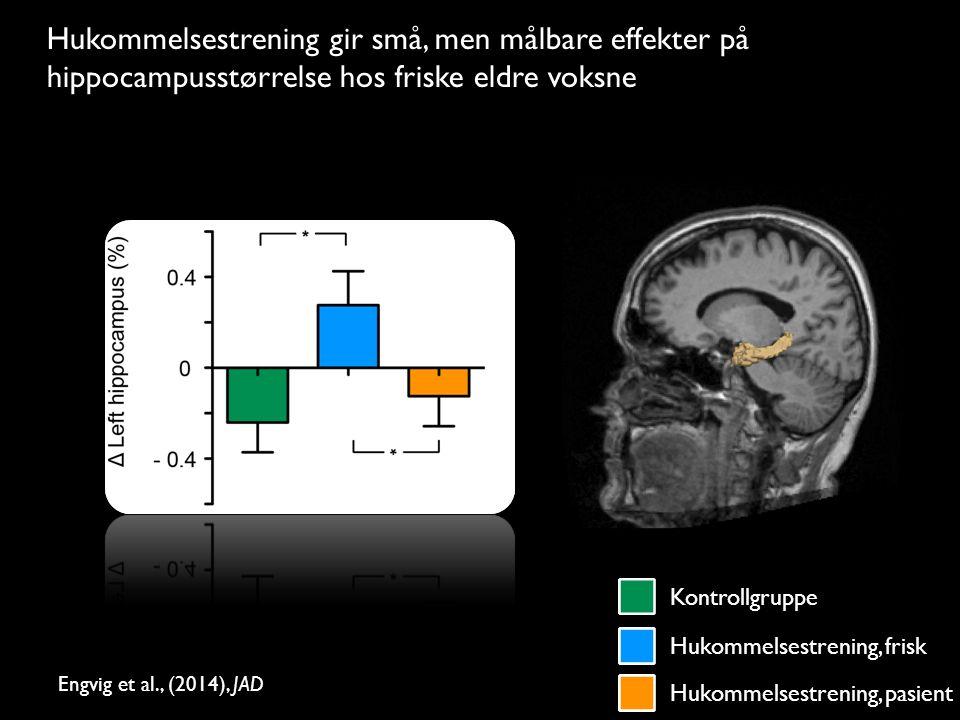 Lysbilde 22/23 t Hukommelsestrening gir små, men målbare effekter på hippocampusstørrelse hos friske eldre voksne Engvig et al., (2014), JAD Kontrollgruppe Hukommelsestrening, frisk Hukommelsestrening, pasient