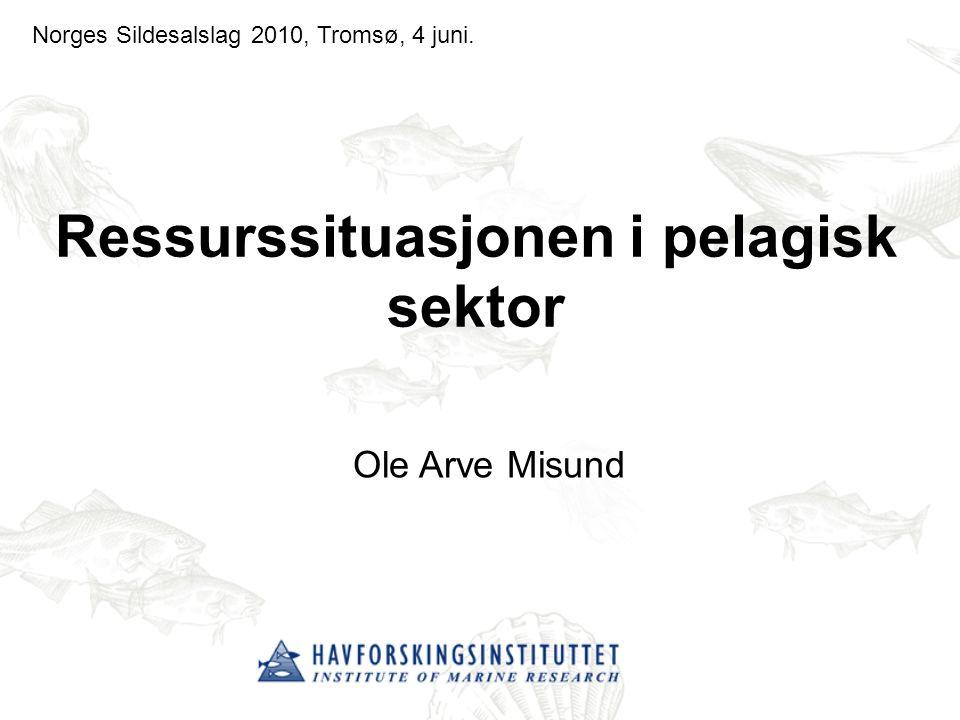 Ressurssituasjonen i pelagisk sektor Ole Arve Misund Norges Sildesalslag 2010, Tromsø, 4 juni.