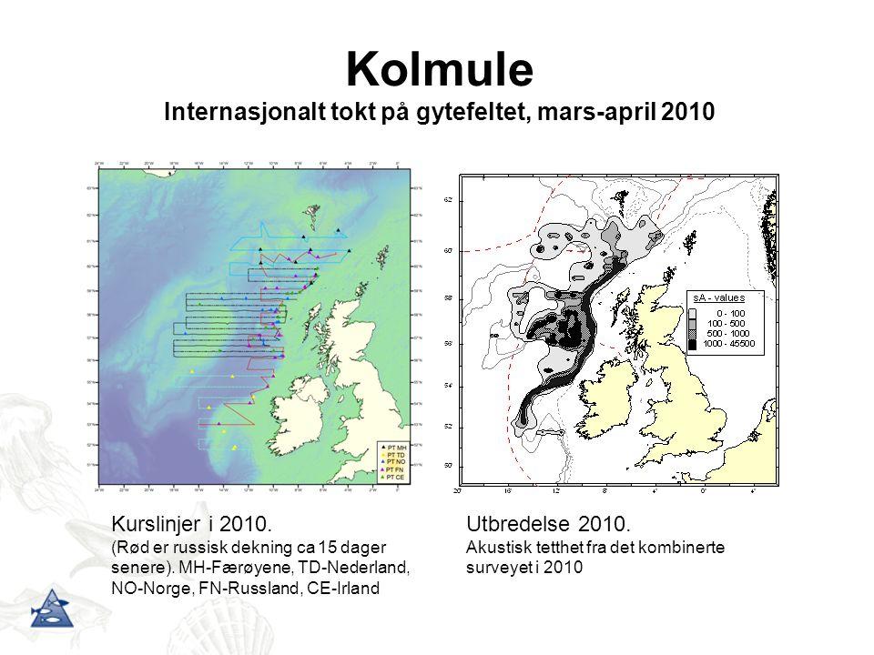 Kolmule Internasjonalt tokt på gytefeltet, mars-april 2010 Utbredelse 2010. Akustisk tetthet fra det kombinerte surveyet i 2010 Kurslinjer i 2010. (Rø