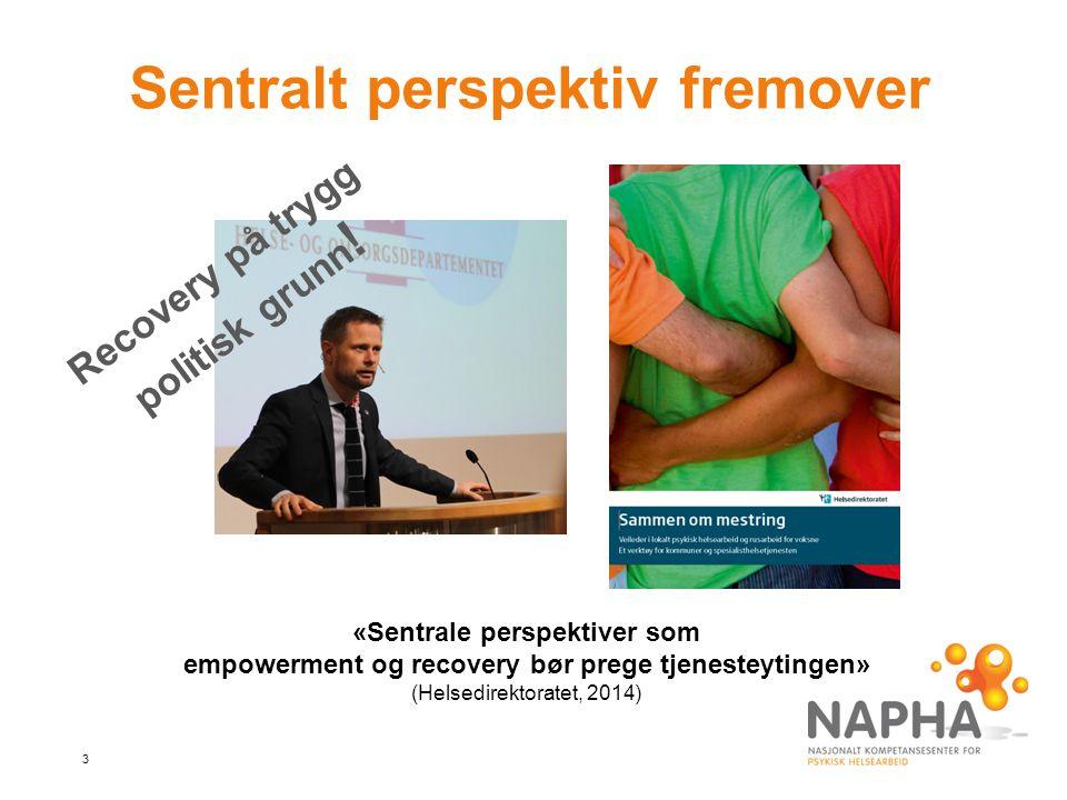 3 Sentralt perspektiv fremover Recovery på trygg politisk grunn .