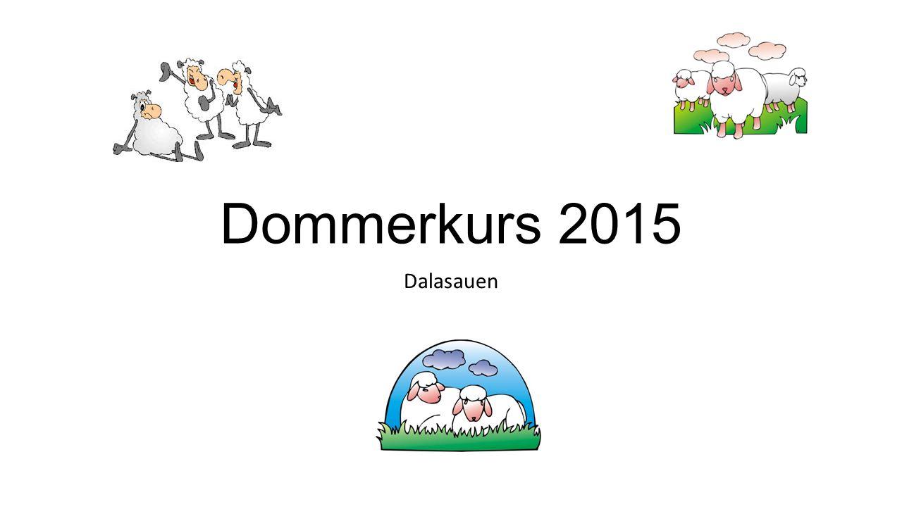 Dommerkurs 2015 Dalasauen
